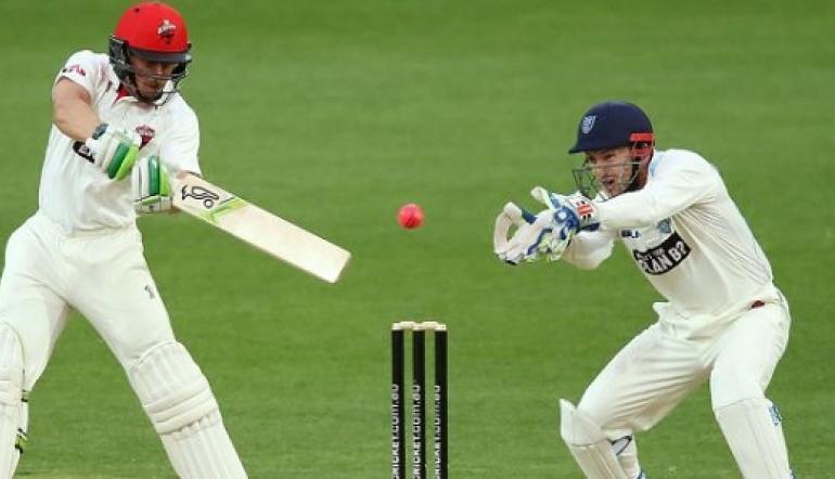Cricket Bet