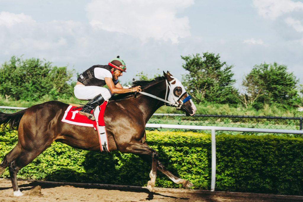 Horse Racing Quinella
